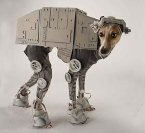 AT AT dog costume you must have