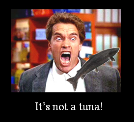 It's not a tuna!