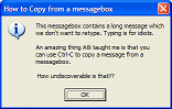 use ctrl-C to copy the text from a messagebox